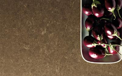 Quartz Countertop Colors: Wild Rice Quartz