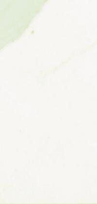 Calacatta Natural Collection Quartz Detail